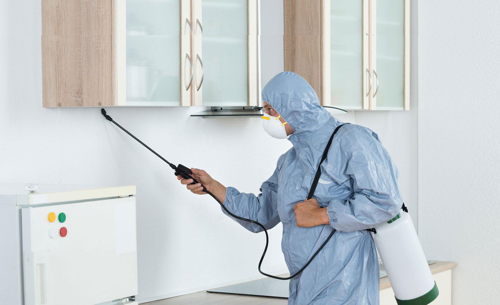Pest Control London Service